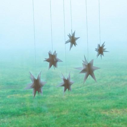 Sternen-Bündel weiss