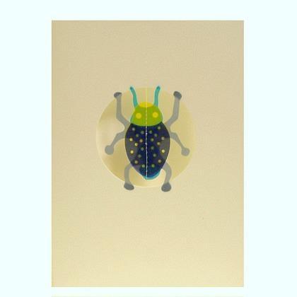 Karte Insekt